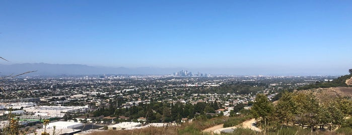 Culver City Stairs is one of California King.