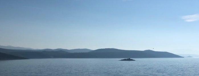 Croatia Region is one of Paises.