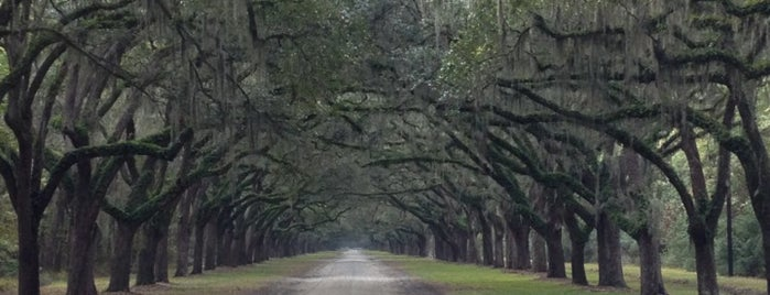 Wormsloe State Historic Site is one of Jesse's Saved Places.