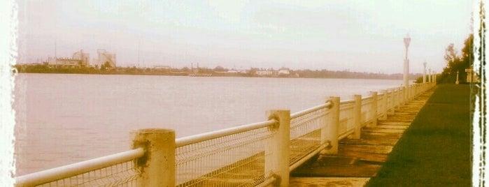 Club de pesca tuxpan. is one of Lugares favoritos de Barrita.