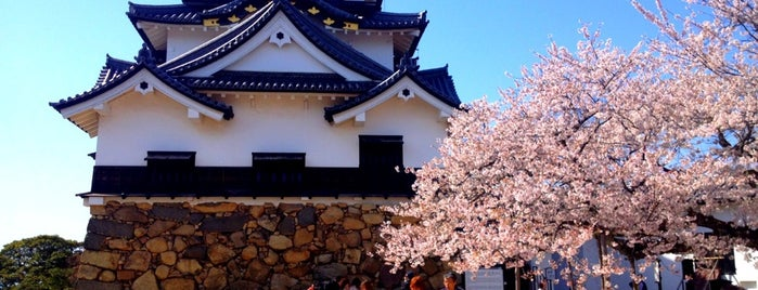 Hikone Castle is one of Japan/Kansai.
