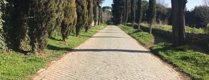 Via Appia is one of Lieux qui ont plu à Daniele.