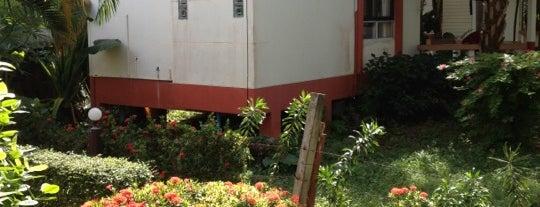 Lanta Arrow House is one of Go to Lanta. Be Bamboocha..