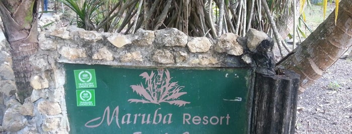 Maruba Jungle Resort is one of Chelseaさんのお気に入りスポット.