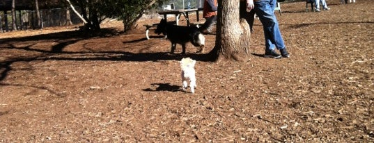 Millbrook Exchange Dog Park is one of Locais curtidos por Illya.