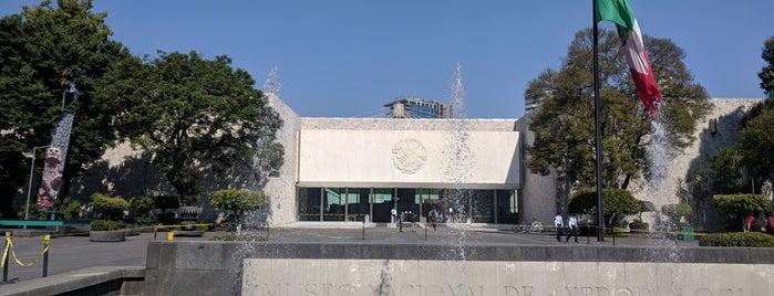 """Mayas  """"El Lenguaje De La Belleza"""" is one of Mexico City."""