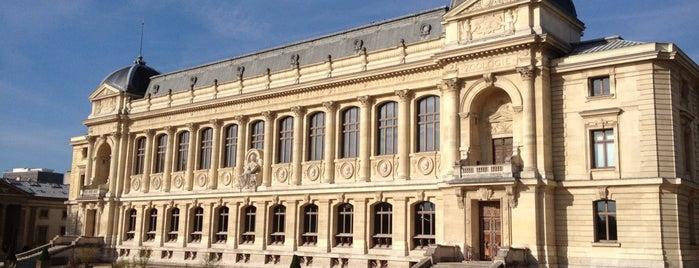 Grande Galerie de l'Évolution is one of Paris.