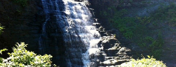 Rockway Falls is one of Trails & Hikes.