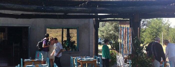Bodega La Azul is one of Mendoza.