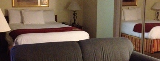 Chase Suite Hotel Tampa is one of Lieux qui ont plu à Owl.
