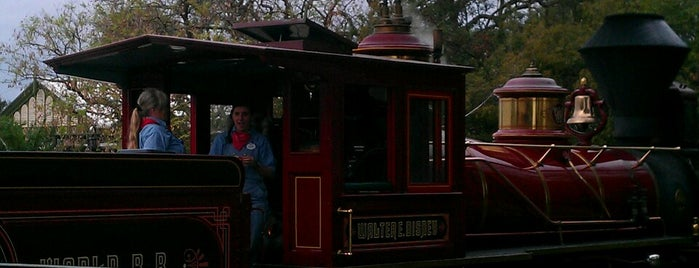 Walter E Disney Steam Train is one of Transportation & Misc Disney World Venues.