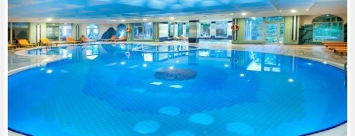 Yüzme Havuzu & Fitness is one of Hrefik@ 님이 좋아한 장소.