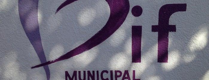 Dif Municipal Coatzacoalcos is one of Posti che sono piaciuti a Changui.