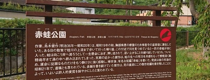 赤蛙公園 is one of 伊豆.