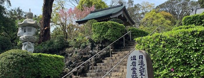 蓮着寺 is one of 城ヶ崎海岸.