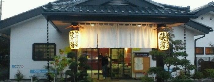 秩父川端温泉 梵の湯 is one of Lugares favoritos de 高井.