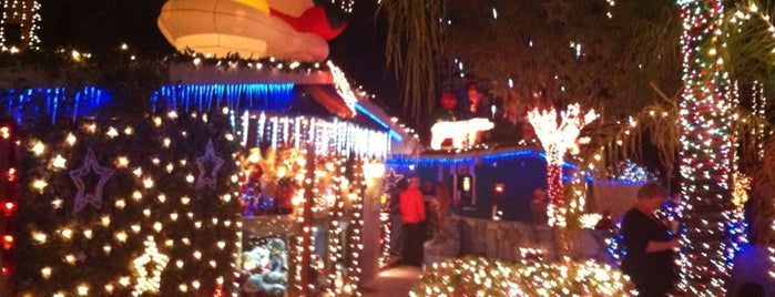 Lee & Patricia Sepanek's Holiday Lights is one of Dan: сохраненные места.