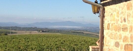 Caprili is one of Montalcino.