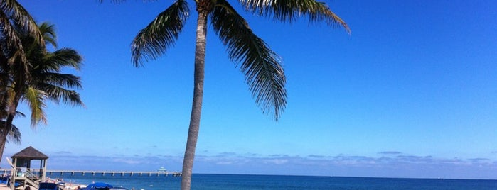 Deerfield Beach is one of Tammy's Liked Places.
