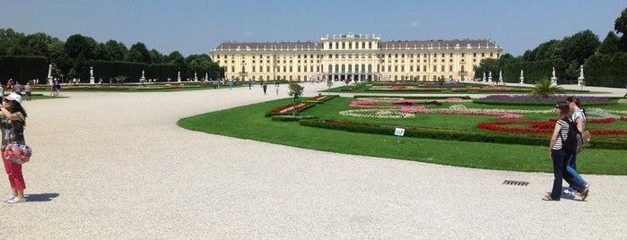 Vienna is one of Posti salvati di Veronique.