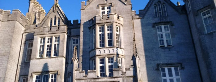 Kinnitty Castle Hotel is one of Paranormal Sights.