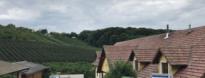 Brennerei Und Wellnesshotel Lagler Kukmirn is one of Günther 님이 좋아한 장소.