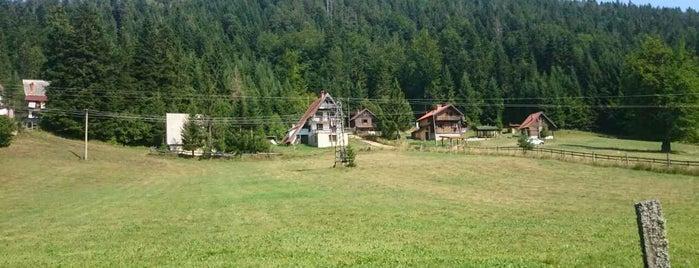 Krnja jela is one of Zlatiborski okrug.