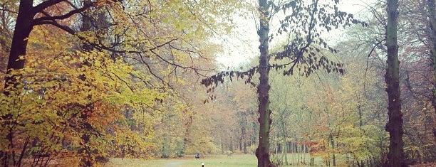 Nachtegalenpark is one of Antwerp.