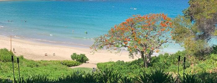 Mauna Kea Beach Hotel, Autograph Collection is one of Lugares guardados de peppy.