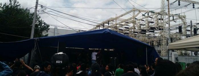 Tianguis Cultural del Chopo is one of CDMX.