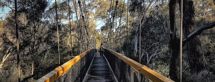 Wombat Bend Playground, Finns Reserve is one of Martin 님이 저장한 장소.