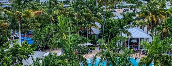 24 North Hotel Key West is one of สถานที่ที่ Chris ถูกใจ.