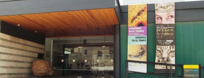 Museu de Ciències Naturals is one of I love Museum.