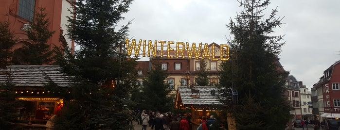 Winterwald Fulda is one of Weihnachtsmärkte 2.