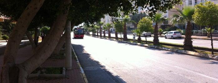 Portakal Çiçeği Bulvarı is one of Gittiğim ve gideceğim yerler.