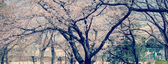 Utsukushigaoka Park is one of Tempat yang Disukai Shinichi.