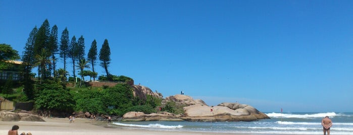 Praia da Joaquina is one of Florianópolis.