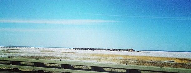 Побережье Финского залива is one of Tempat yang Disukai Александр.