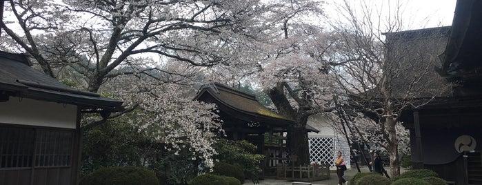 Shojoshinin Temple is one of Nara + Kyoto.