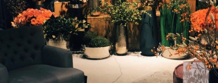 Marina Home مارينا is one of Furniture Jeddah.