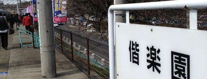 Kairakuen Station is one of JR 키타칸토지방역 (JR 北関東地方の駅).