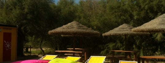 Duna Degli Orsi Beach is one of Riviera Adriatica.