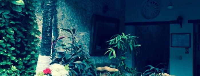 Hotel 3 Banderas is one of Lieux qui ont plu à Liz.