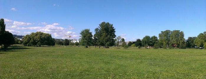 Parc de Gerland is one of Lyon monuments / parcs.