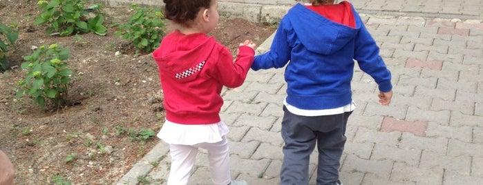 Barış Parkı is one of Yaşam Ve Moda Notlarım'ın Beğendiği Mekanlar.