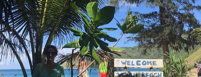 Yanui Beach is one of Orte, die Oylum gefallen.