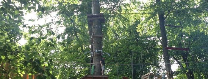 Kletterwald Taunus – Forest Adventures is one of Hotspots Hessen | Spiel & Spaß.