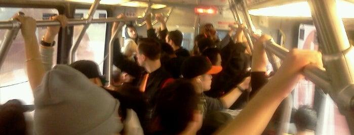 MUNI Metro Stop - Carl & Stanyan is one of MUNI Metro Stations.