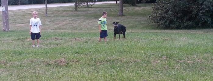 West Allis Dog Run is one of Dog runs.