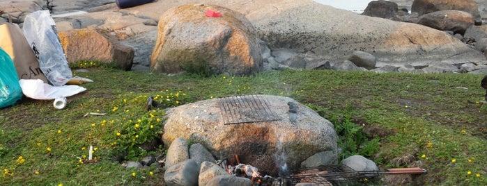 Hattusaari is one of Kite spots.